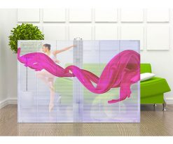 transparent led video window display (4)