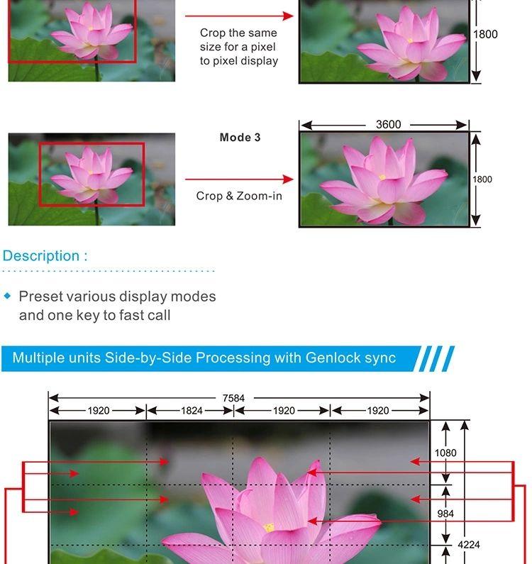 video processor 2